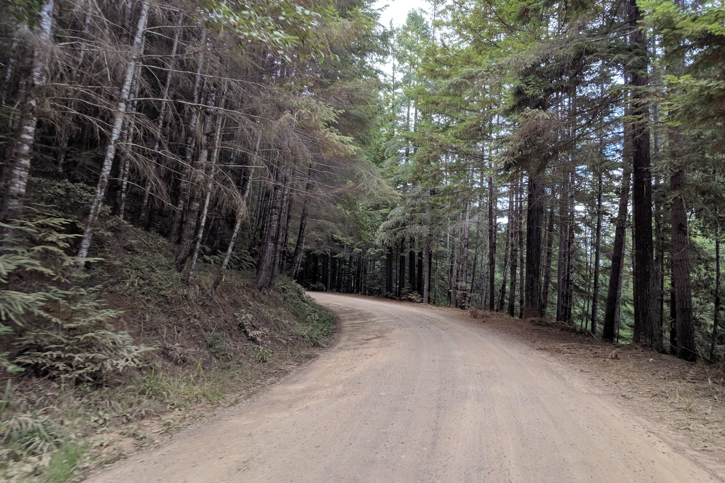 dirt_road_2.jpg