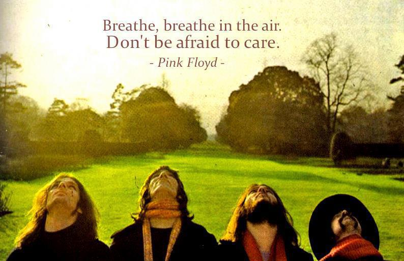 breathe, breath in the air.jpg