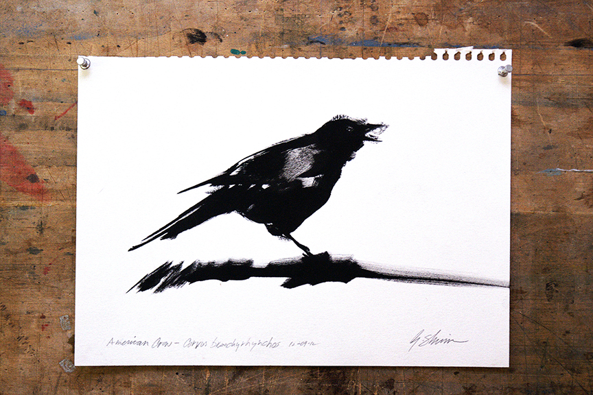 The crow that started me down this path, drawn quickly with a graffiti artist's tagging pen called a KRINK.