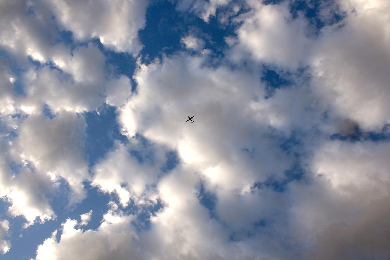 It's a bird! No it's a plane!