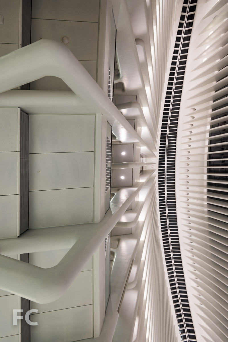 Looking up at the Transit Hall rib structure.