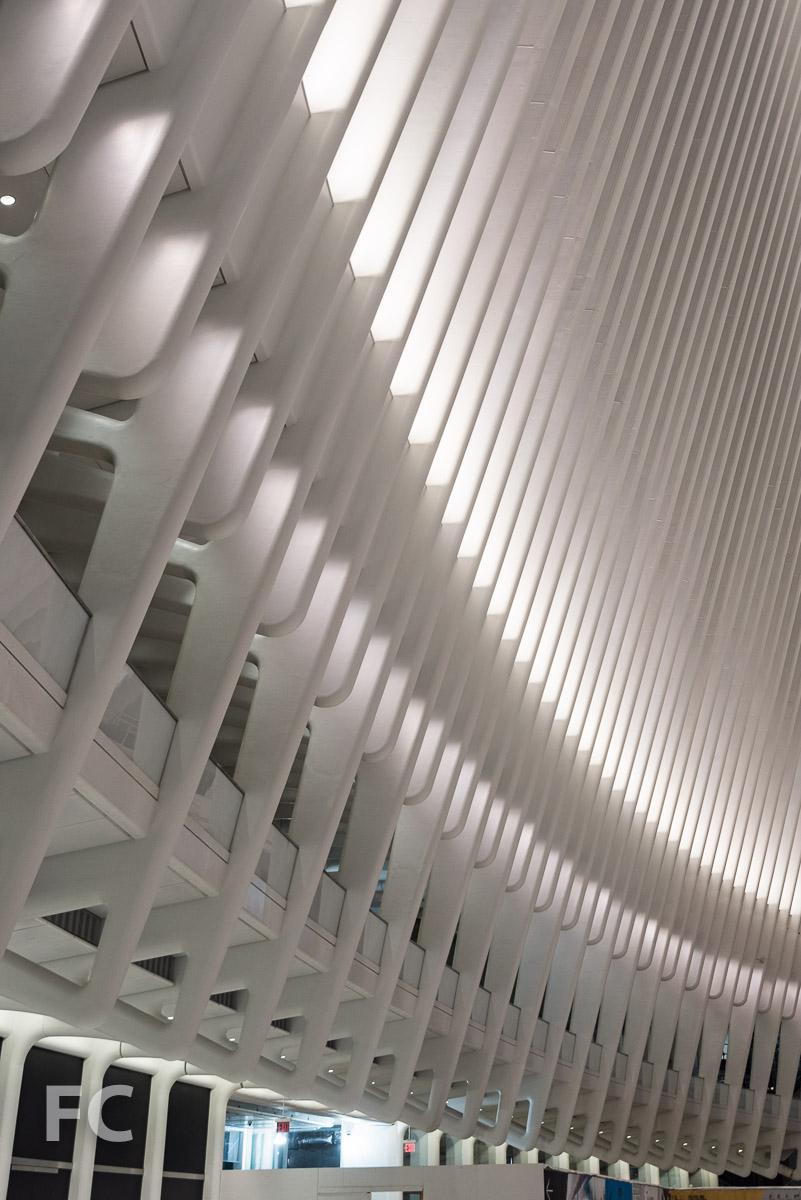 Transit Hall rib structure detail.