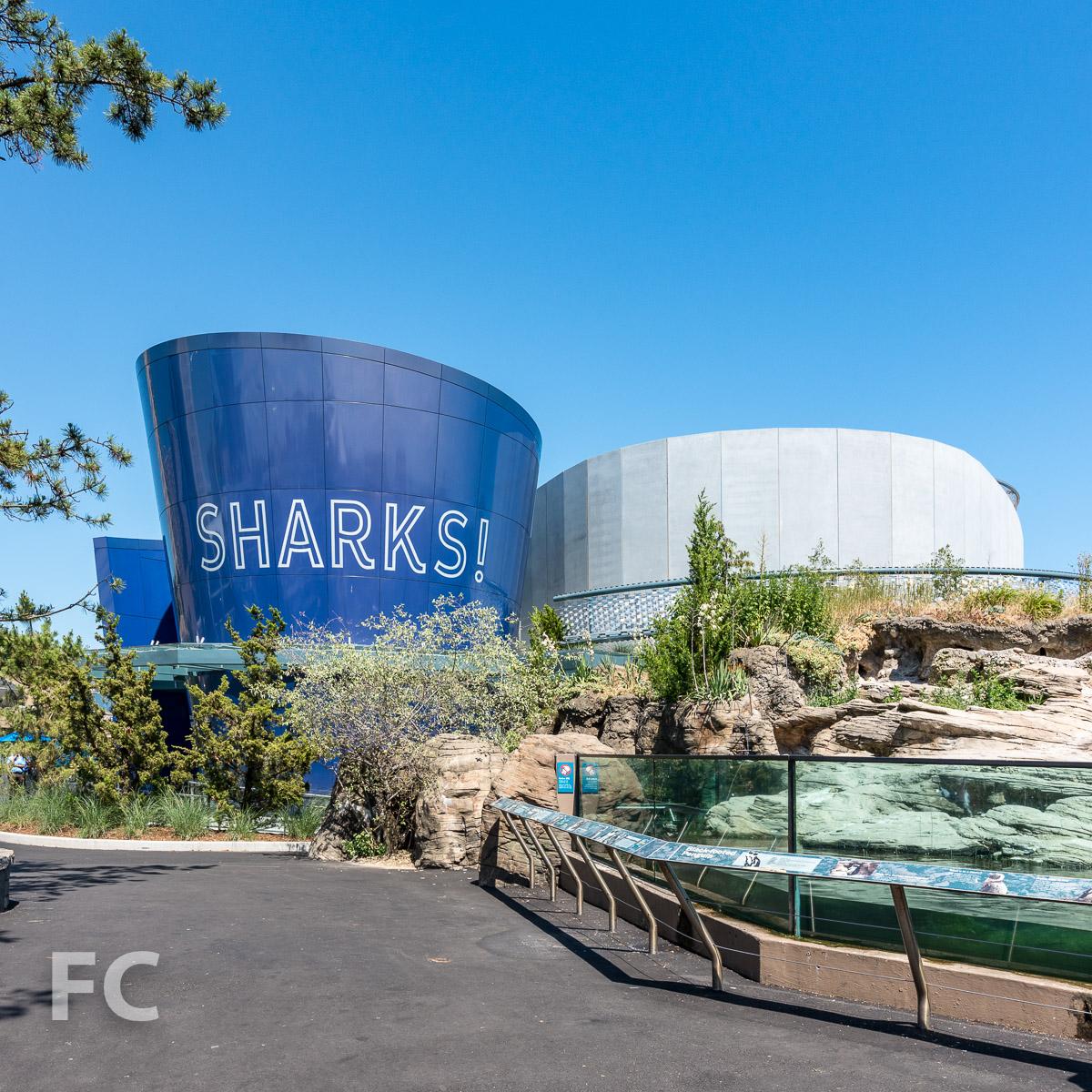 2018_07_05-NY Aquarium-DSC03467-2.jpg