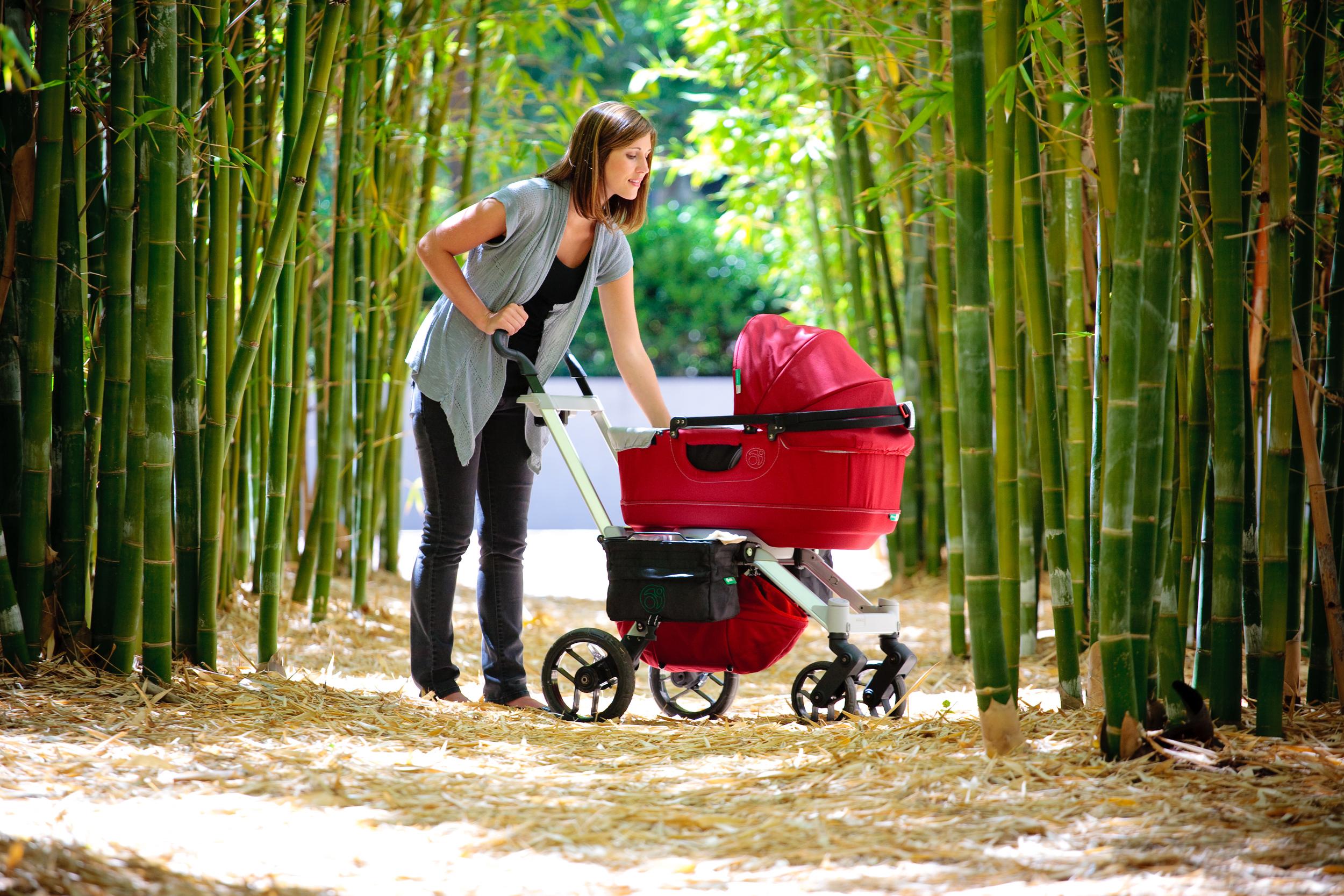 OB_Bamboo_Full_4022.jpg