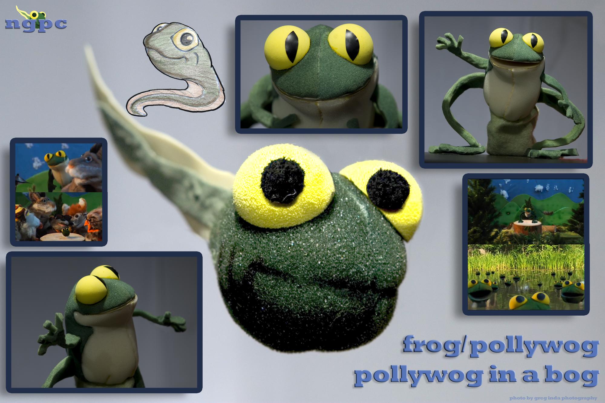 pollyfrogsmall.png