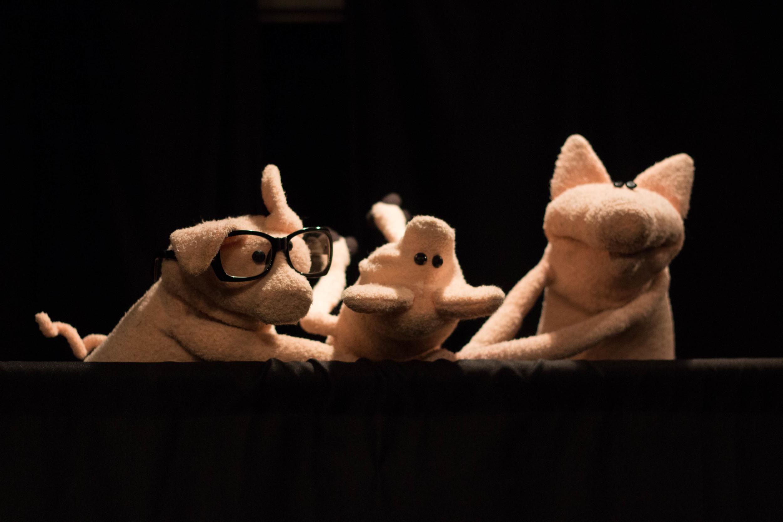 Pig_Dance.jpg