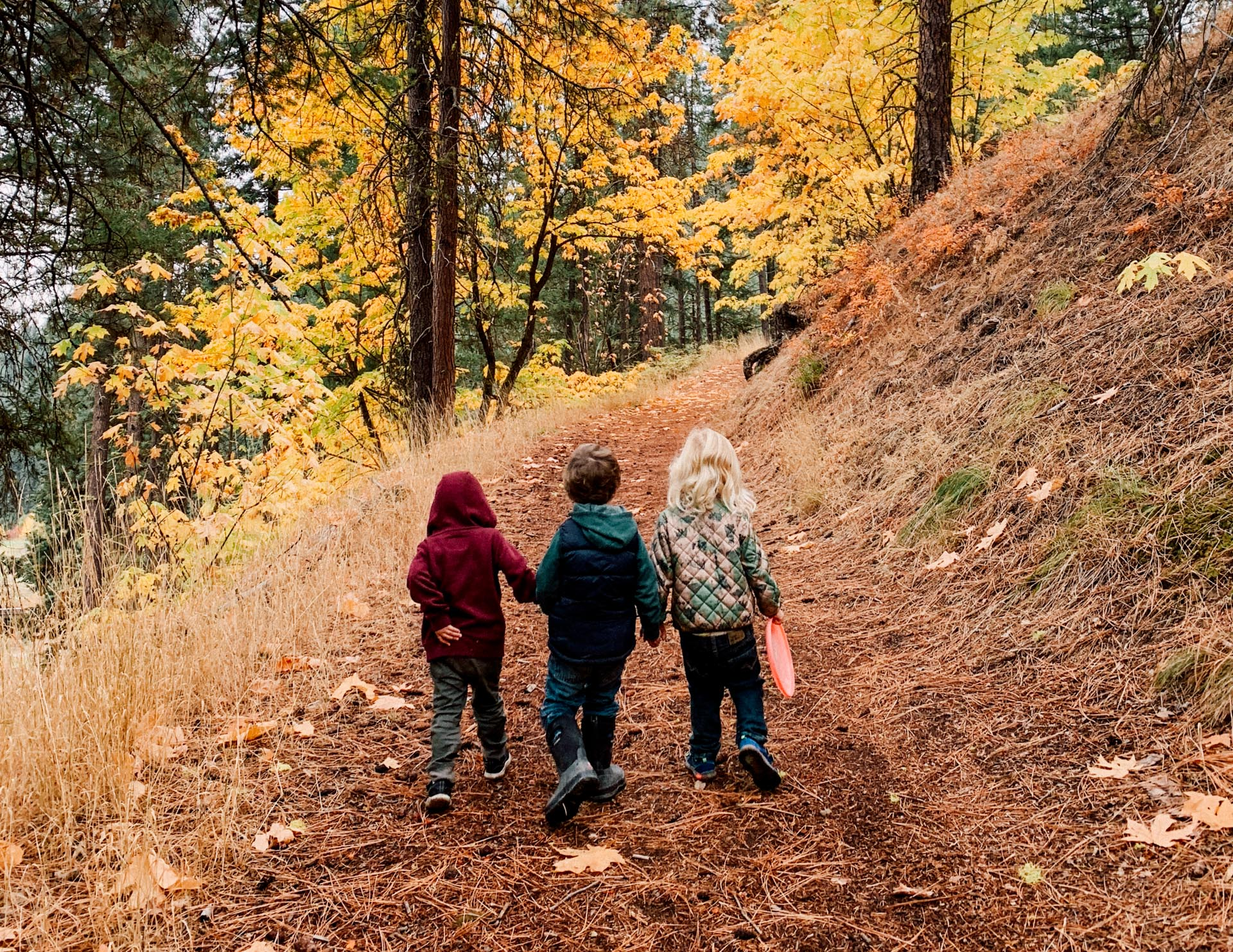 Full Day Nature Immersion - Our full day program supports working families. With long days for young students we flex our indoor and outdoor time depending on the season, the day and the feel of the students. Every day includes a rest time to replenish their bodies.