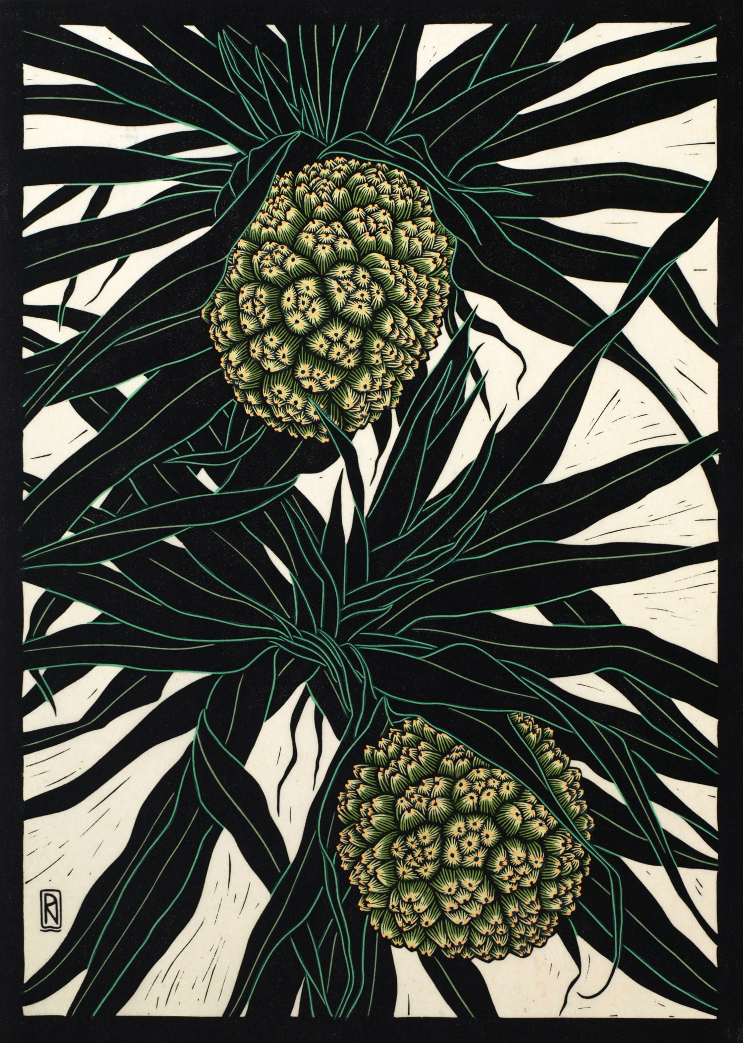Pandanus Fruit Linocut coloured
