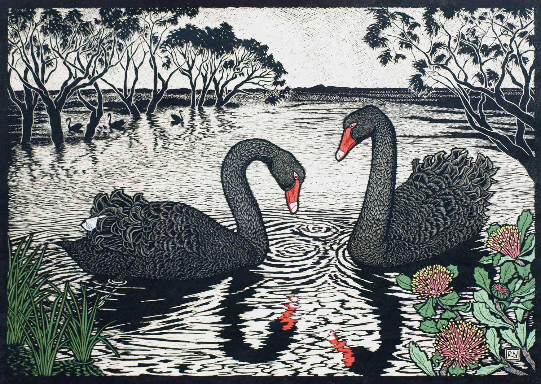 Black Swans  53 X 74.5 CM EDITION OF 50  HAND COLOURED LINOCUT ON HANDMADE JAPANESE PAPER  $1,550