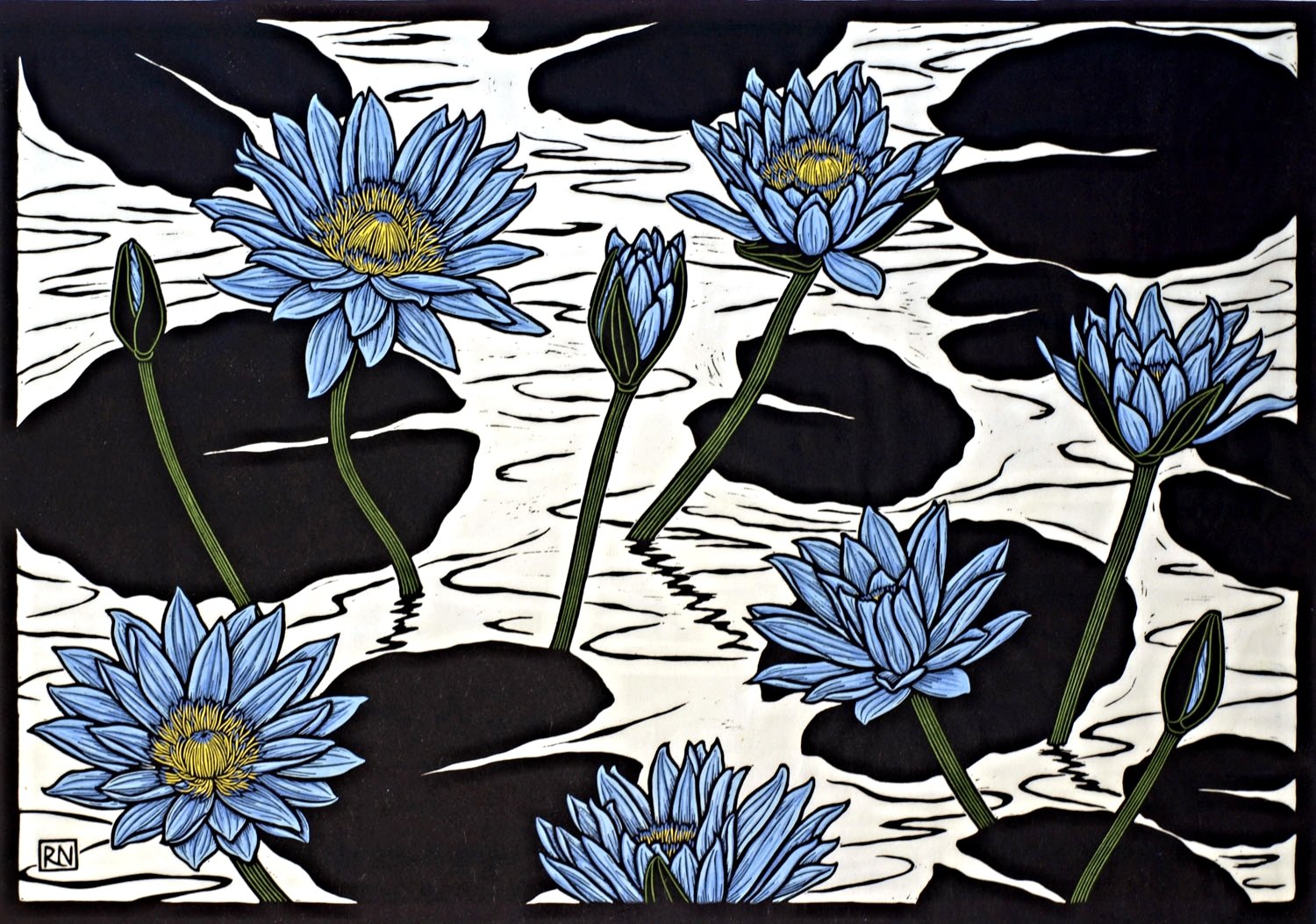 LILY POND  51.5 X 74 CM EDITION OF 50  HAND COLOURED LINOCUT ON HANDMADE JAPANESE PAPER  $1,550