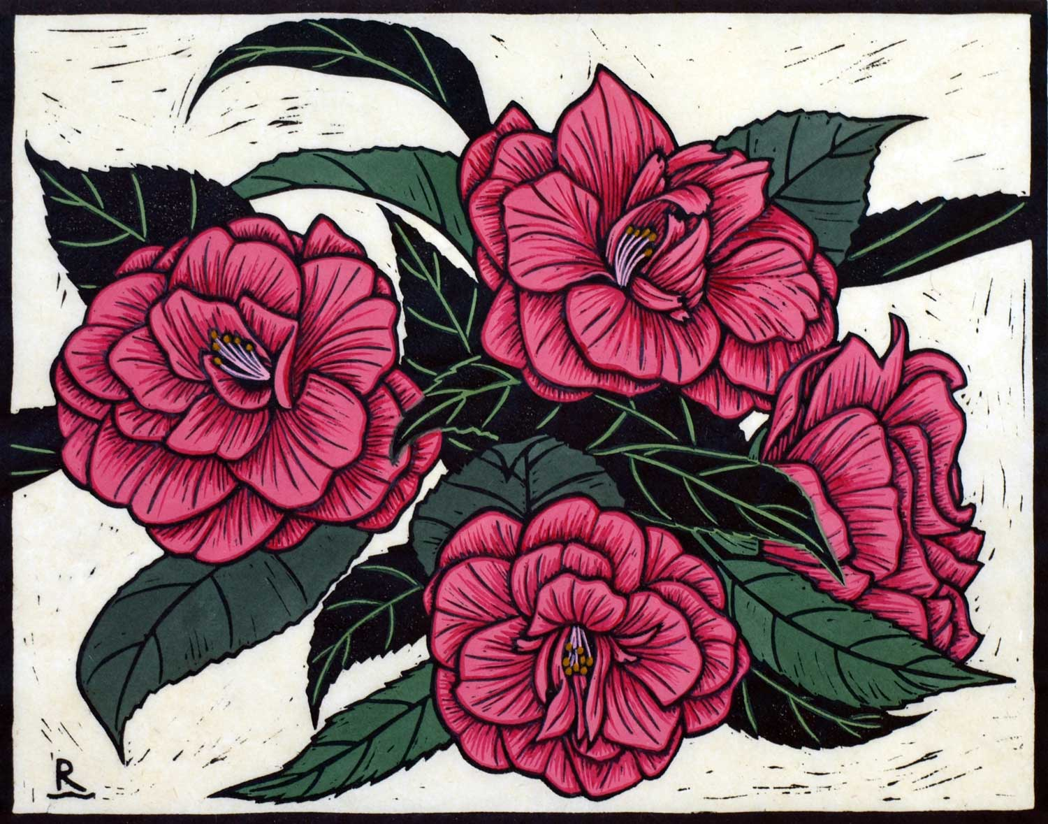 Camelia  22 x 28 cm, Edition of 50  Hand-coloured Linocut on hand made Japanese paper $650
