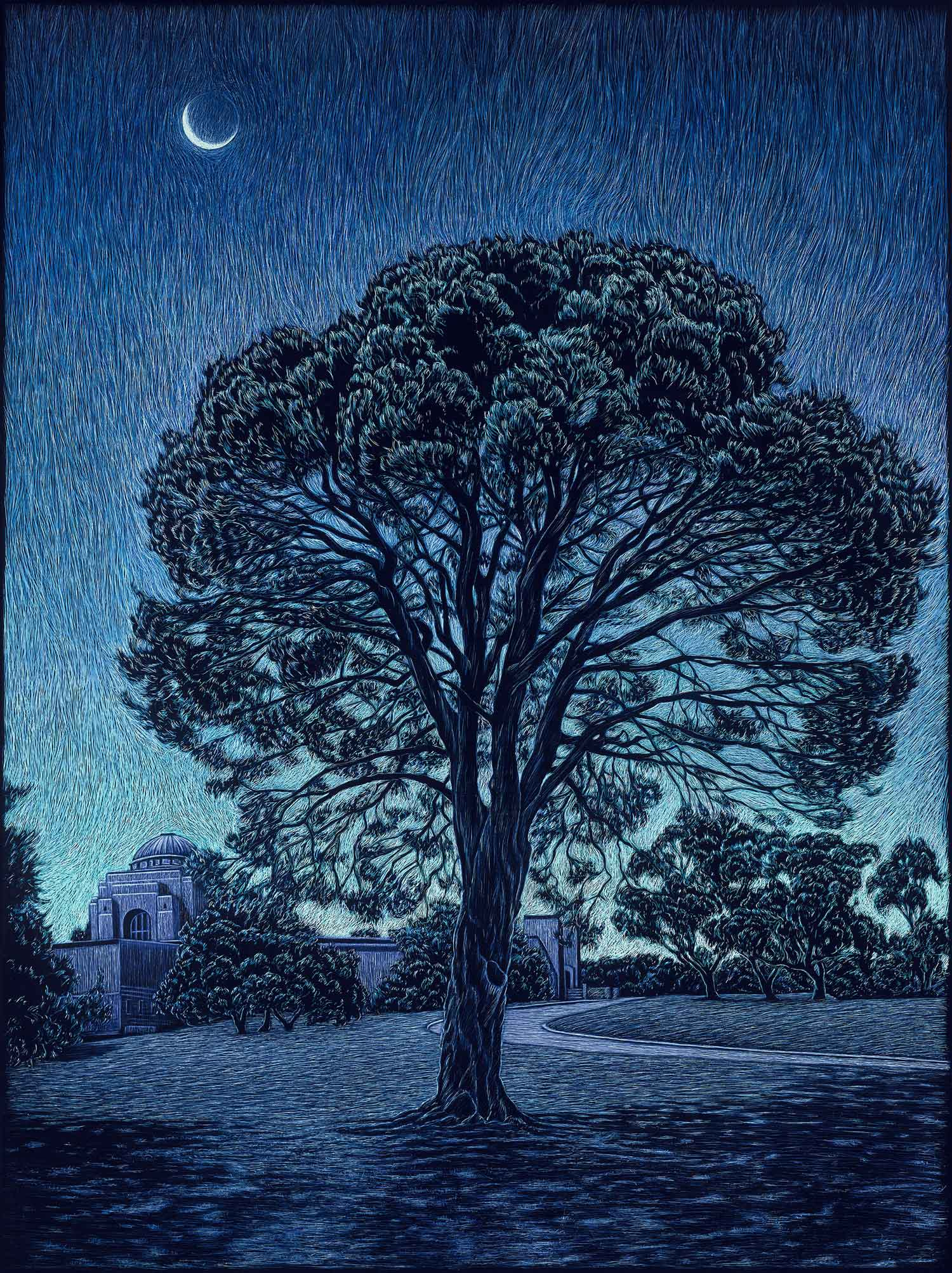 THE LONE PINE, AUSTRALIAN WAR MEMORIAL  61 X 45.5 CM,  EDITION OF 50  PIGMENT ON COTTON RAG PAPER  $1,100
