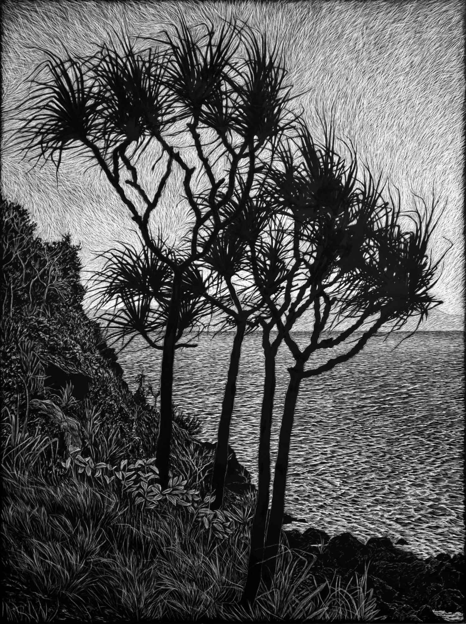 HEADLAND WITH PANDANUS  61 X 45.5 CM,  EDITION OF 50  PIGMENT ON COTTON RAG PAPER  $1,100 also available 75 x 56 cm $1,350