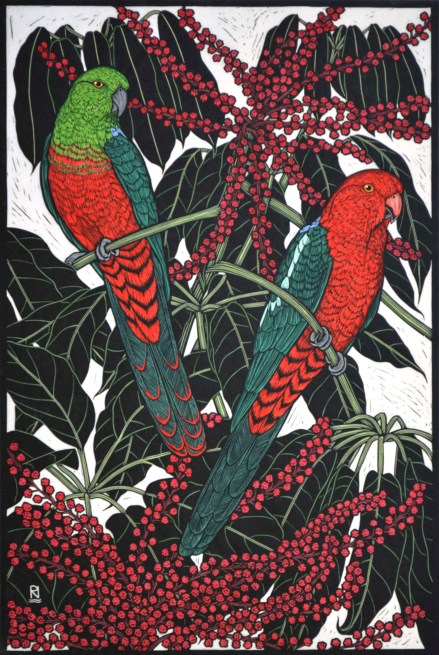 KING PARROT  75 X 50 CM EDITION OF 50  HAND COLOURED LINOCUT ON HANDMADE JAPANESE PAPER  $1,550