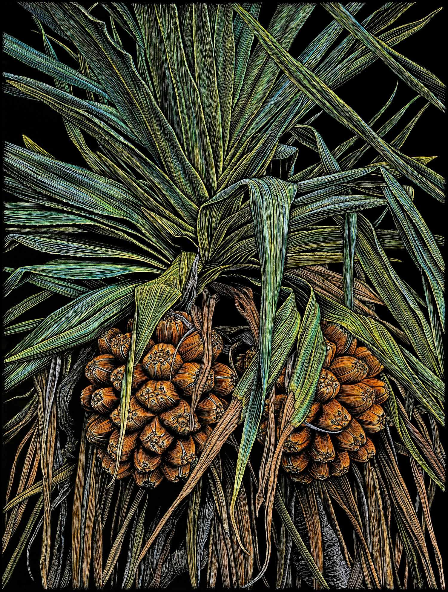 Pandanus Palm Beach (colour version)  76 x 57 cm,  Edition of 50  PIGMENT ON COTTON RAG PAPER  $1,350