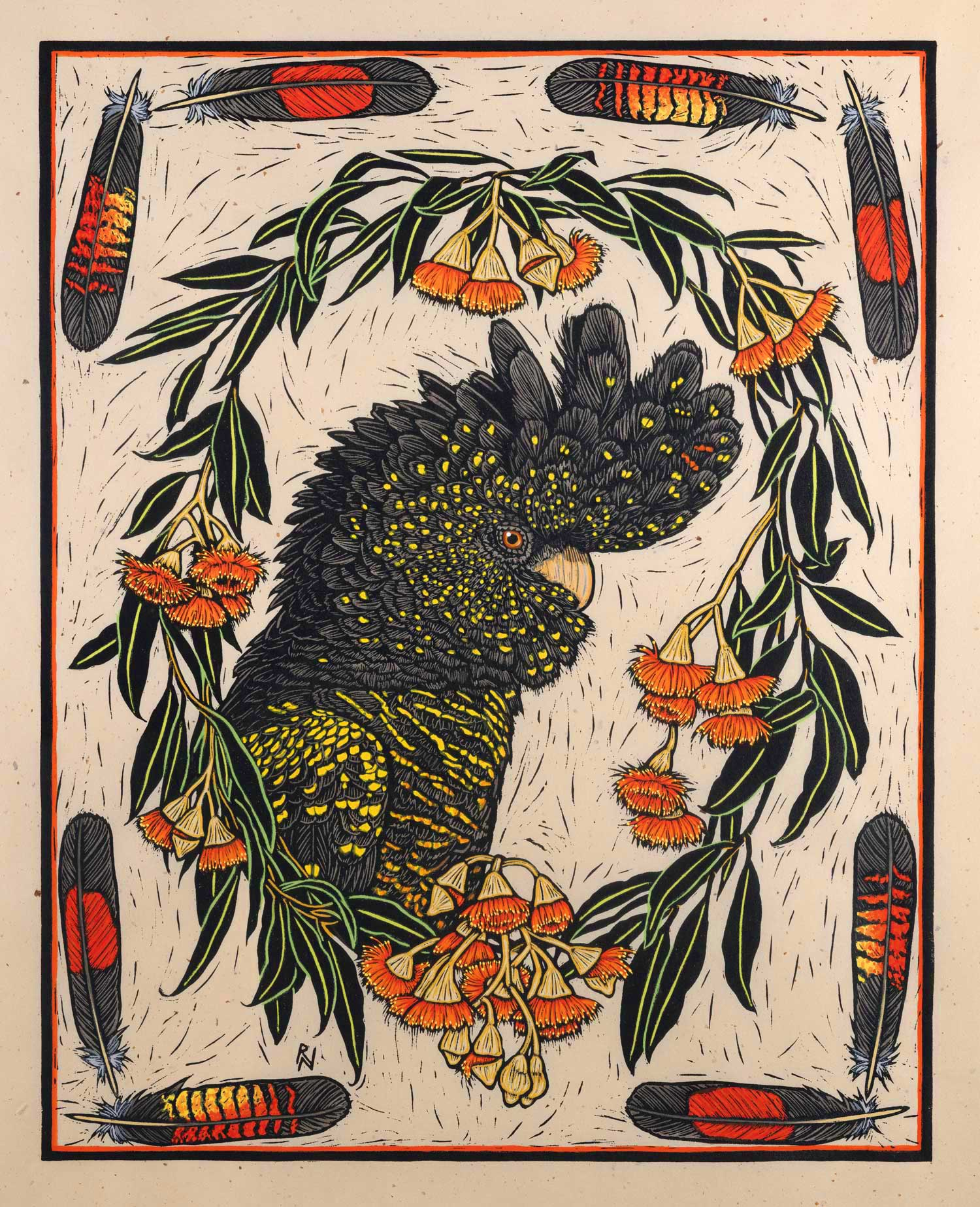 Black Cockatoo and gum Blossom  49 x 39 cm Edition of 50  Hand coloured linocut on handmade Japanese paper  $1,100