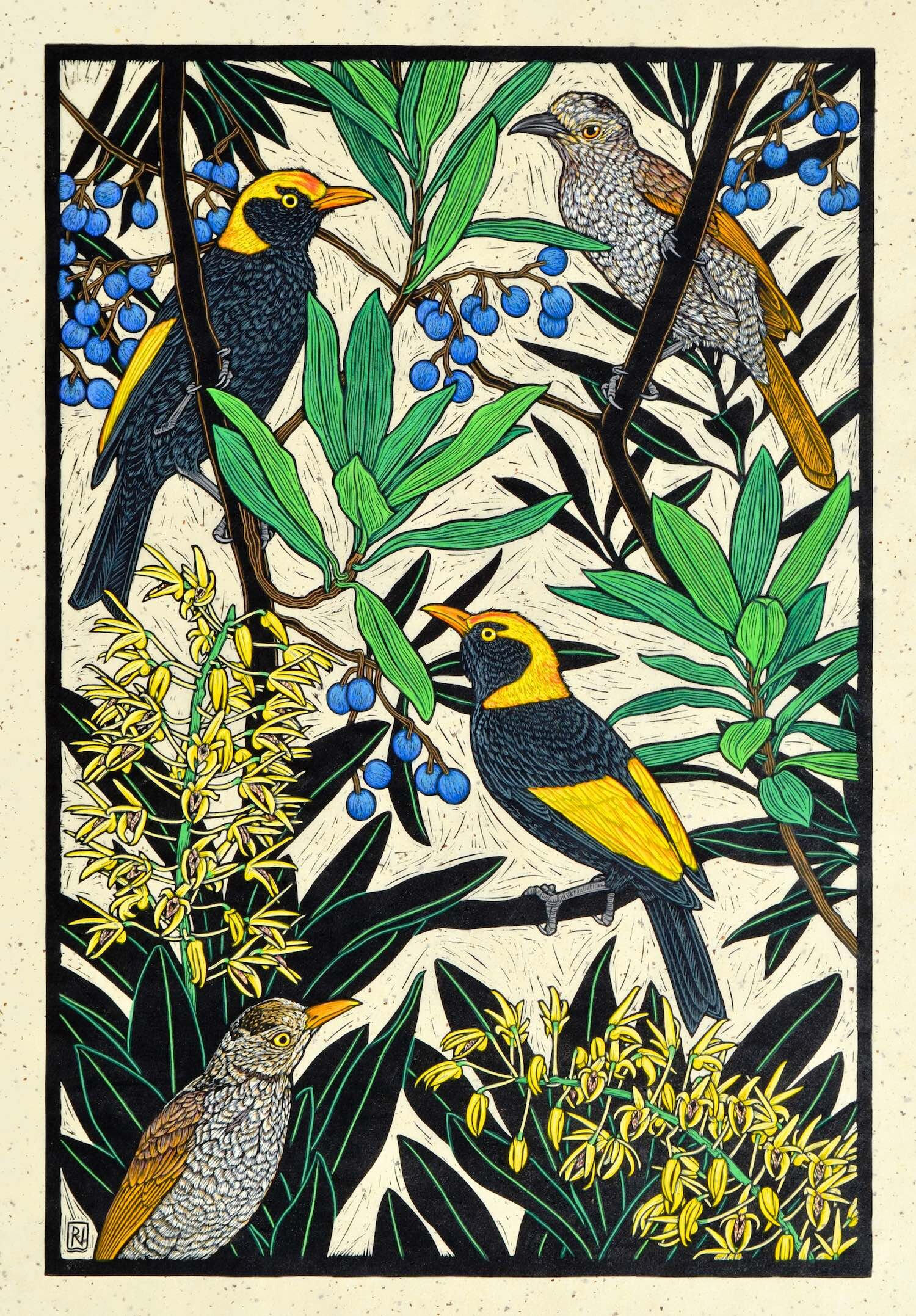 Regent Bowerbird with rainforest orchid  76 x 51 cm, Edition of 50  Hand-coloured linocut on handmade Japanese paper  $1,700