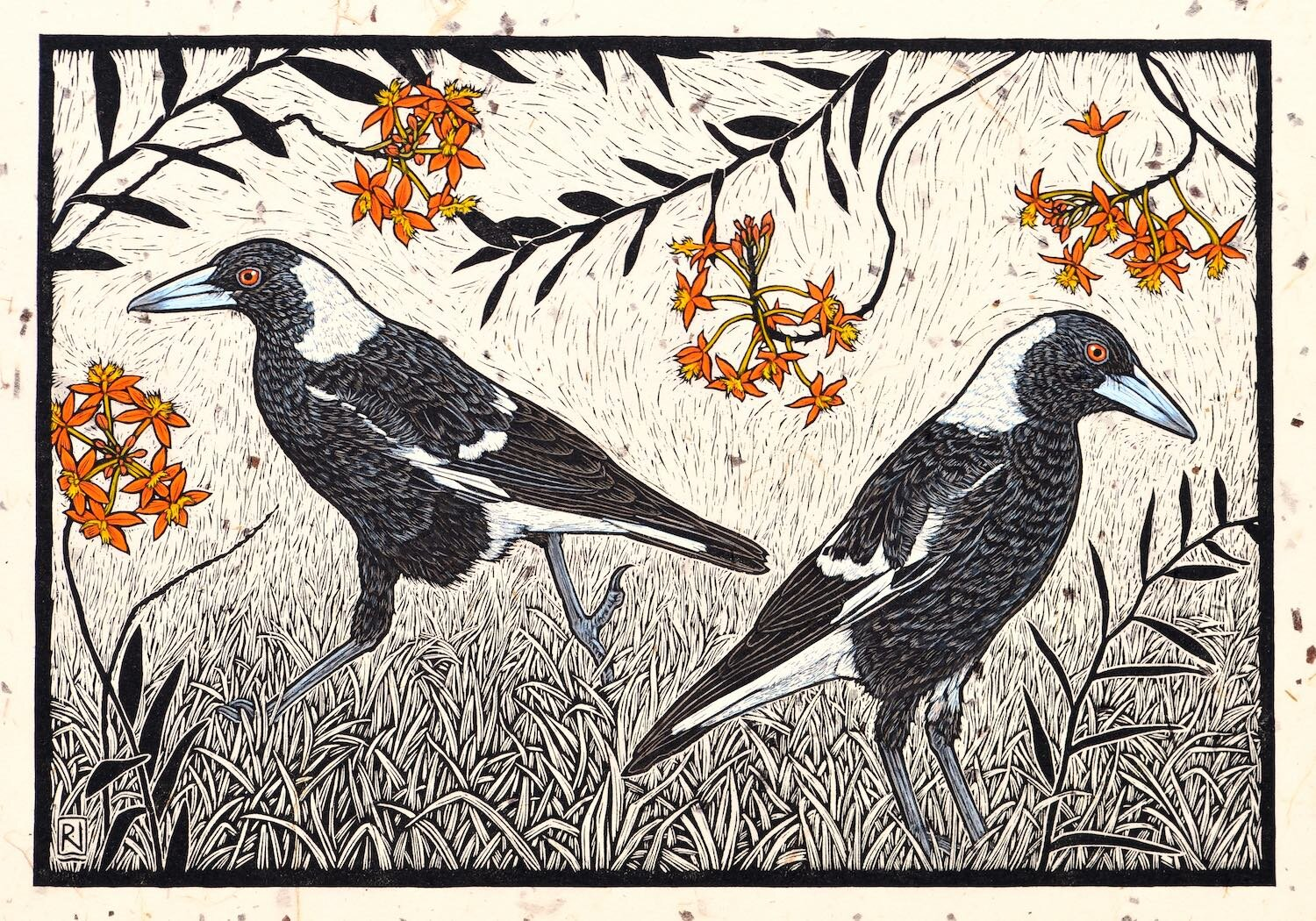 Magpie and Crucifix Orchid  38.5 x 56 cm, Edition of 50  Hand-coloured linocut on handmade Japanese paper  $1,100