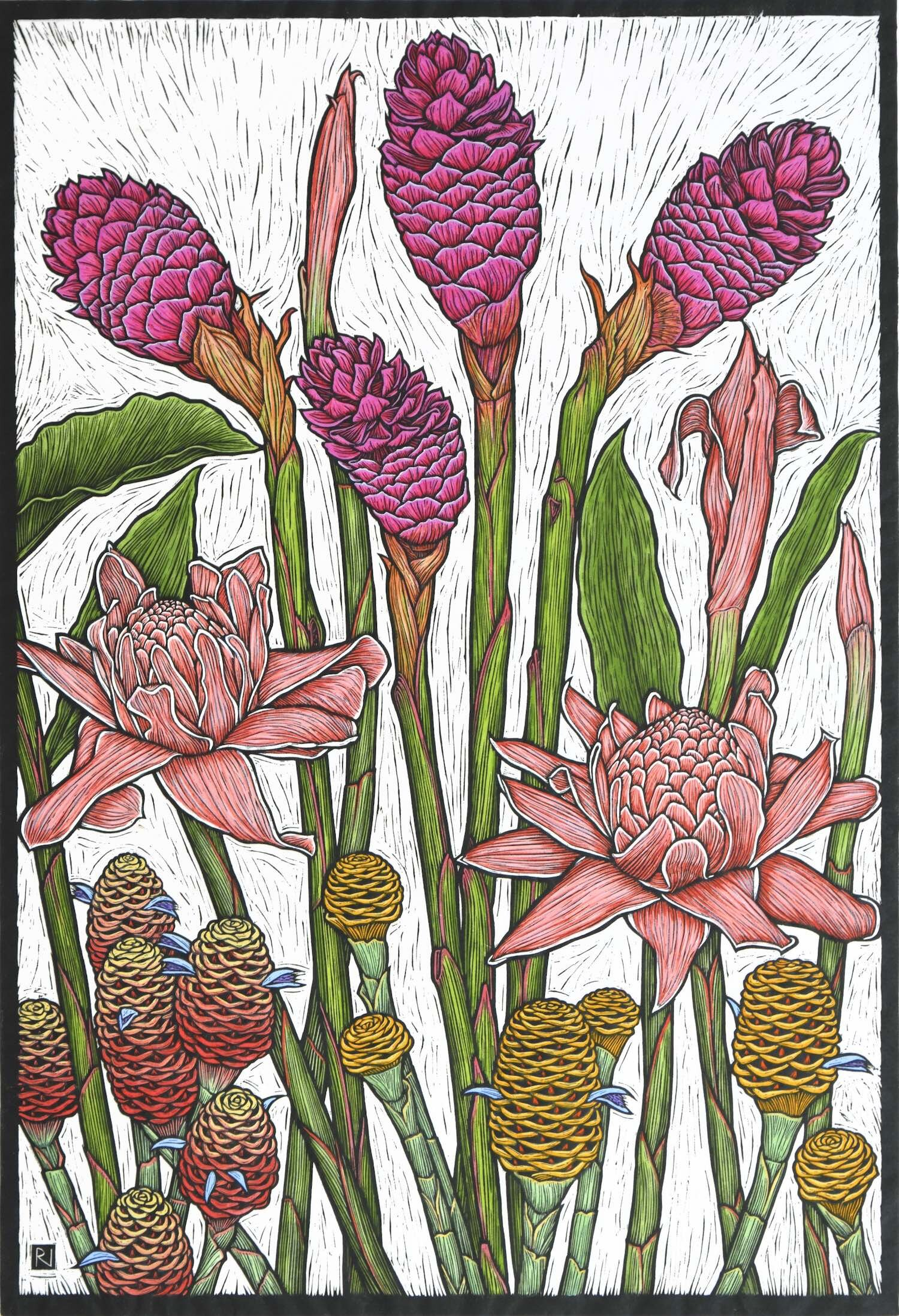 tropical Gingers  79 x 54 cm,  Edition of 50  Hand-coloured linocut on handmade Japanese paper  $1,700