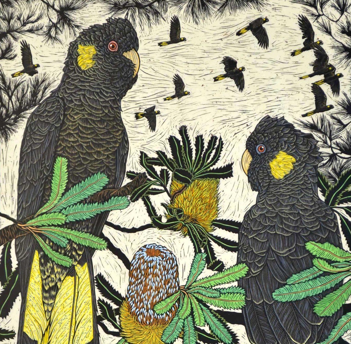 Birds Gallery 1