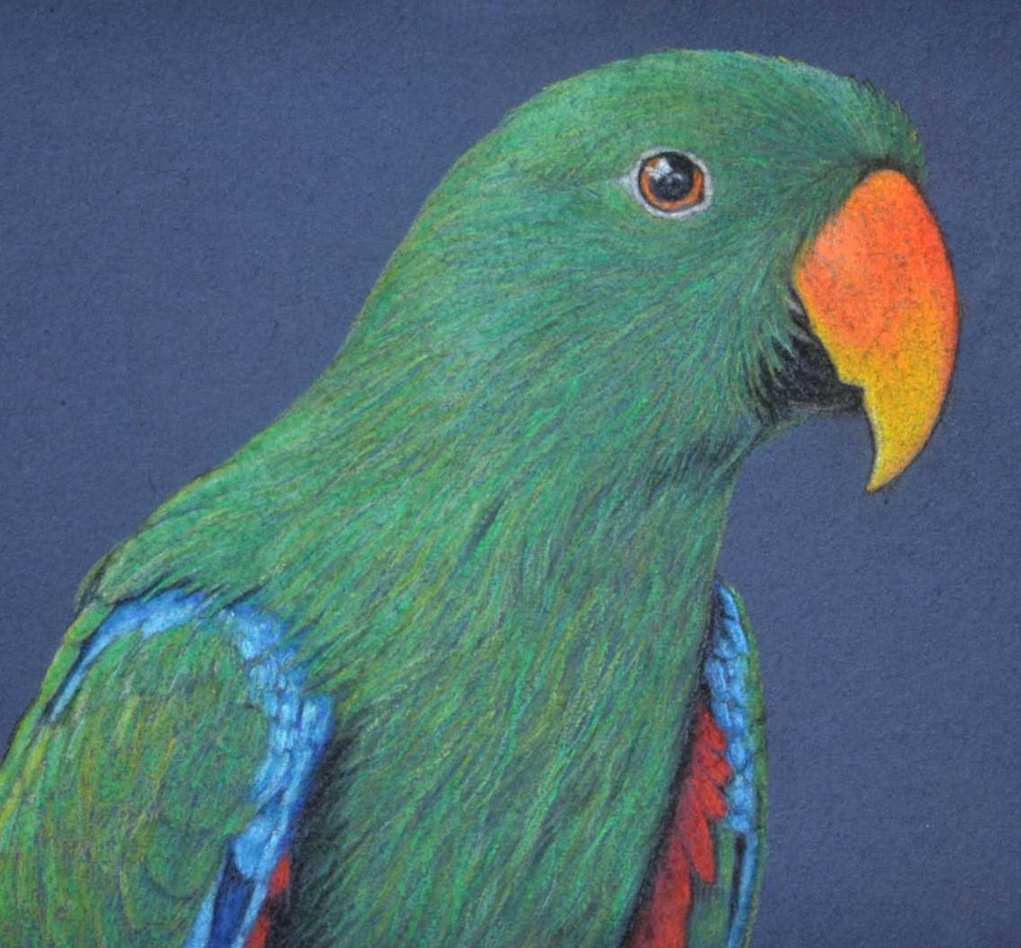 Birdland Series 3