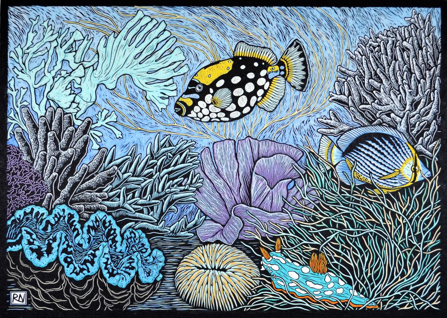 Coral reef  53 X 74 CM, Edition of 50  Hand-Coloured linocut on handmade japanese paper  $1,700