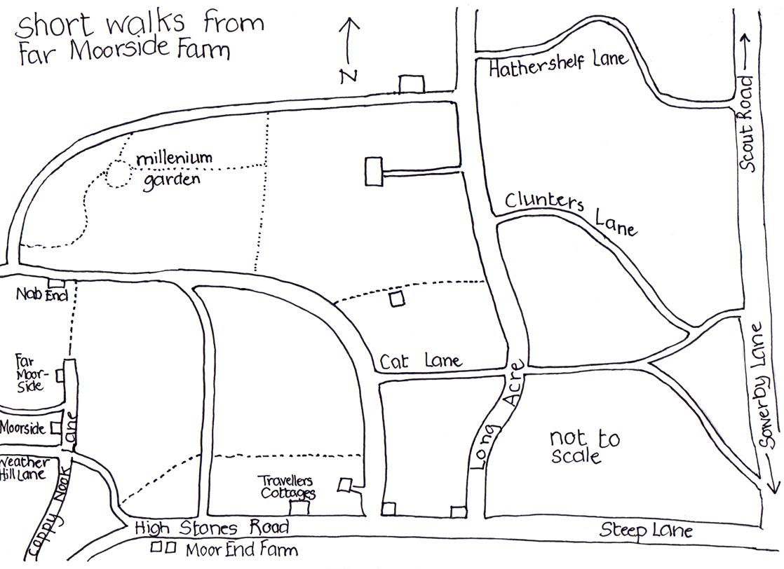 Short walks from Far Moorside Farm
