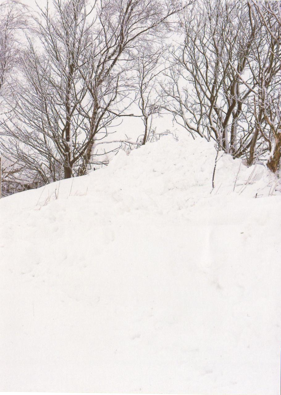 snow_mont.jpg