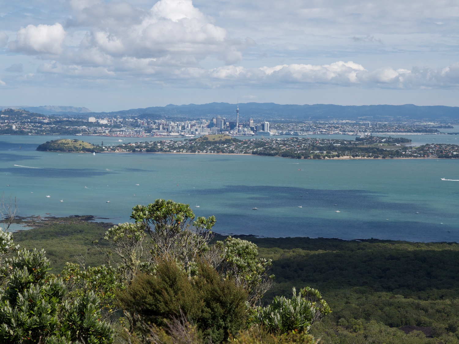 Auckland city from Rangitoto Island