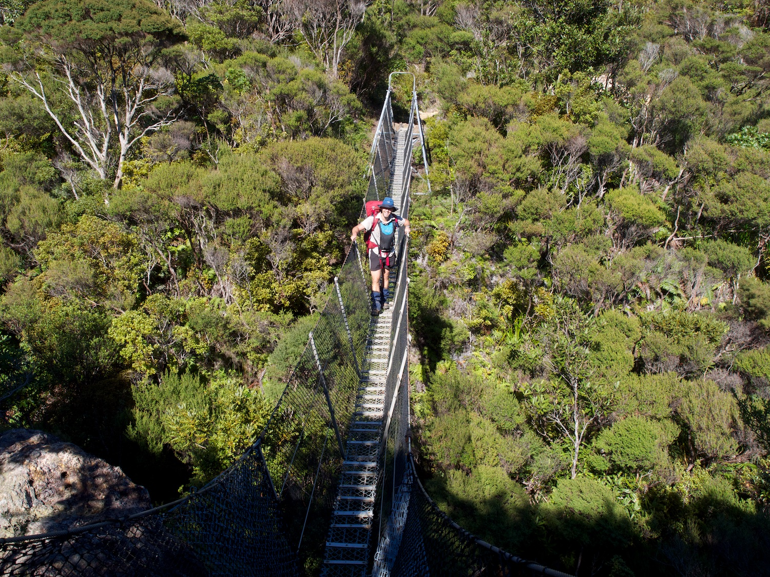 Tramping on Great Barrier Island