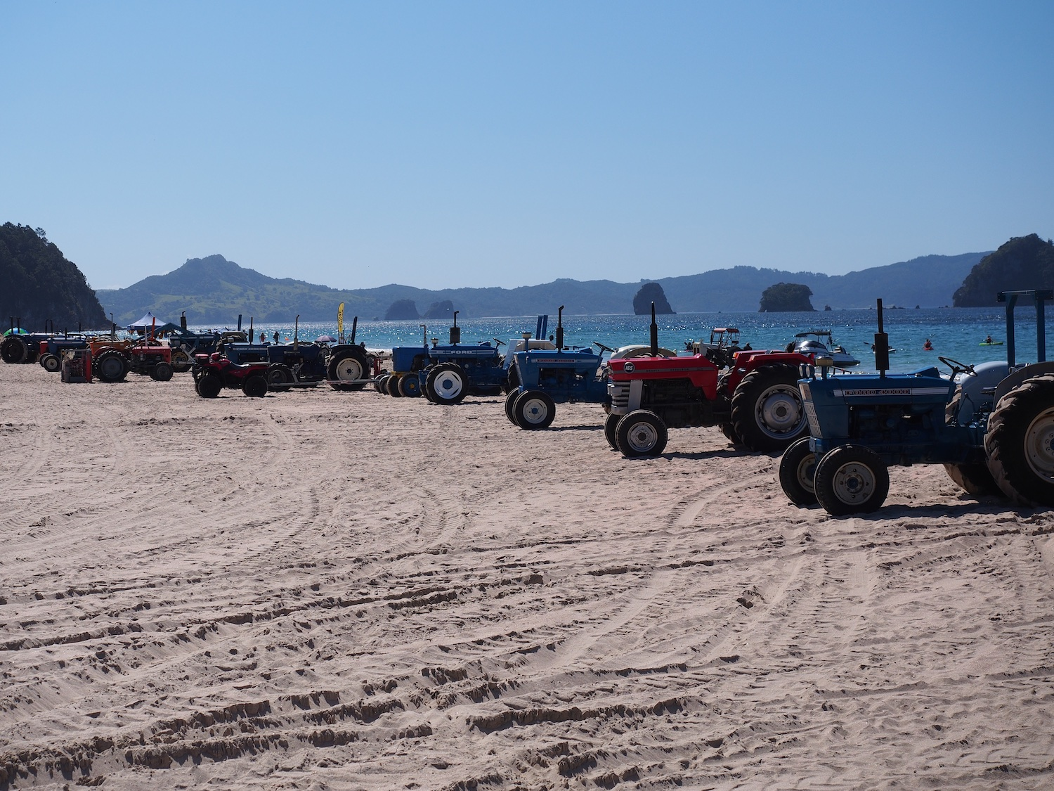 Tractors lined up on Hahei Beach, Coromandel
