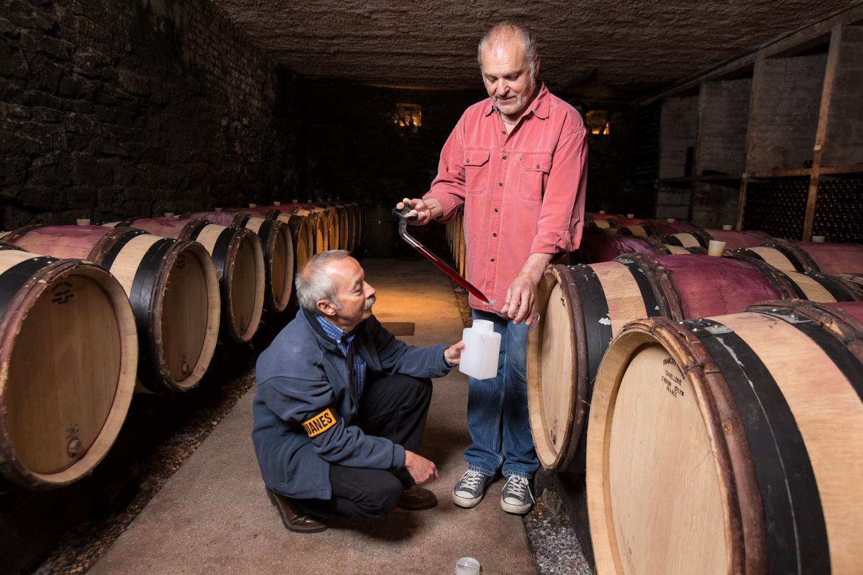 Contrôle viticole dans les chais de M.Chevalier commune LADOIX-