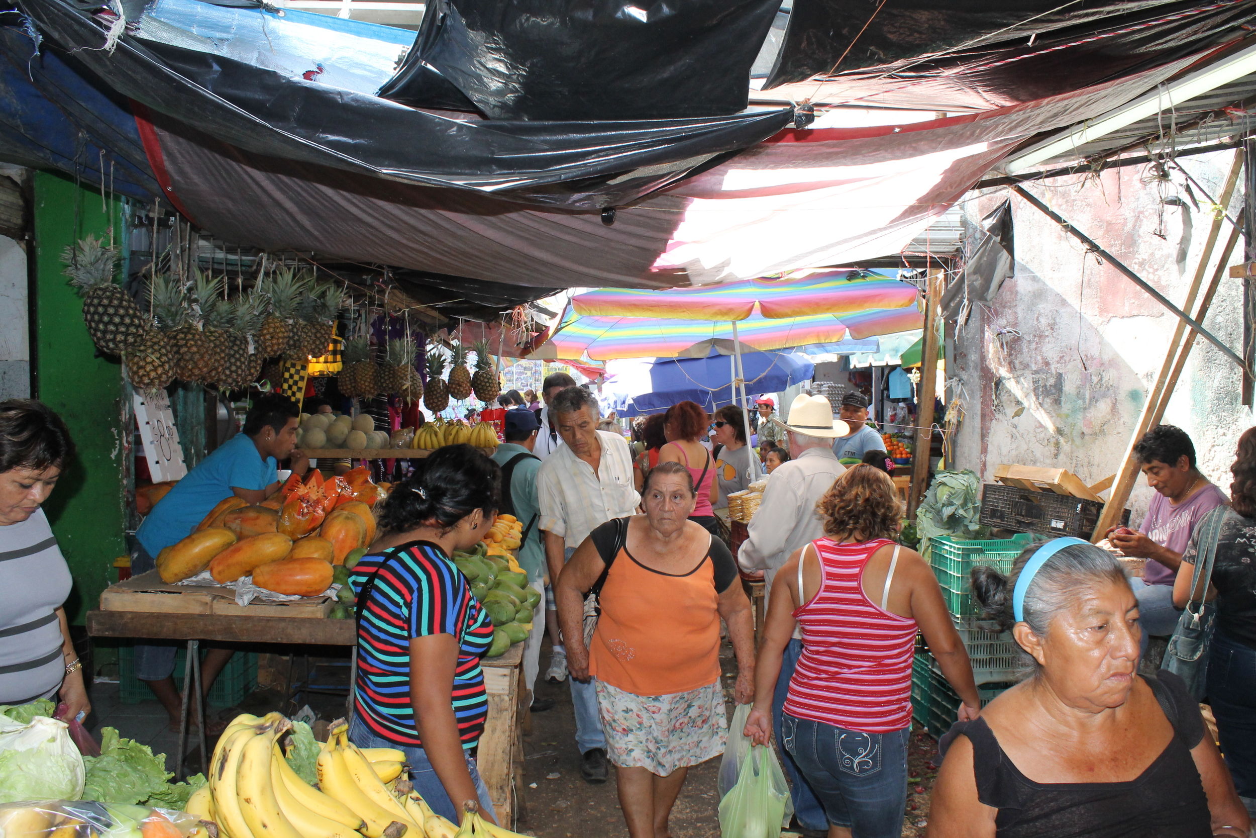 Merida's Main Market
