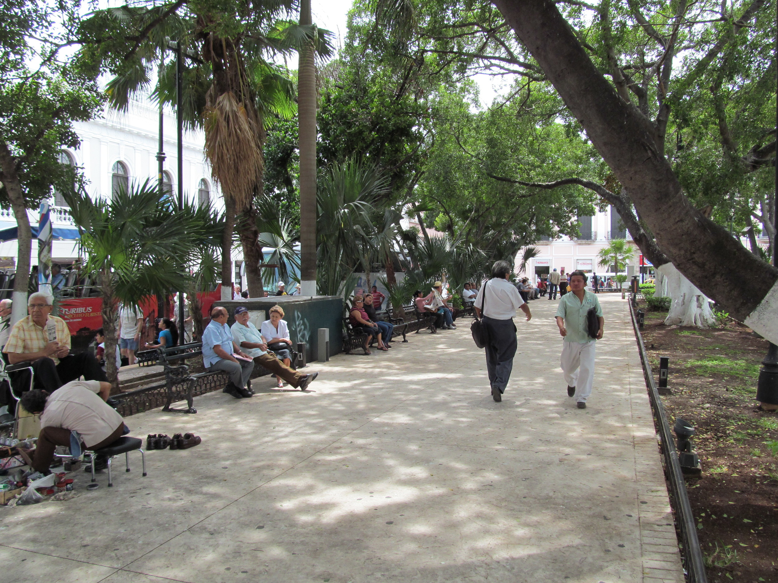 The main square aka La Plaza Grande