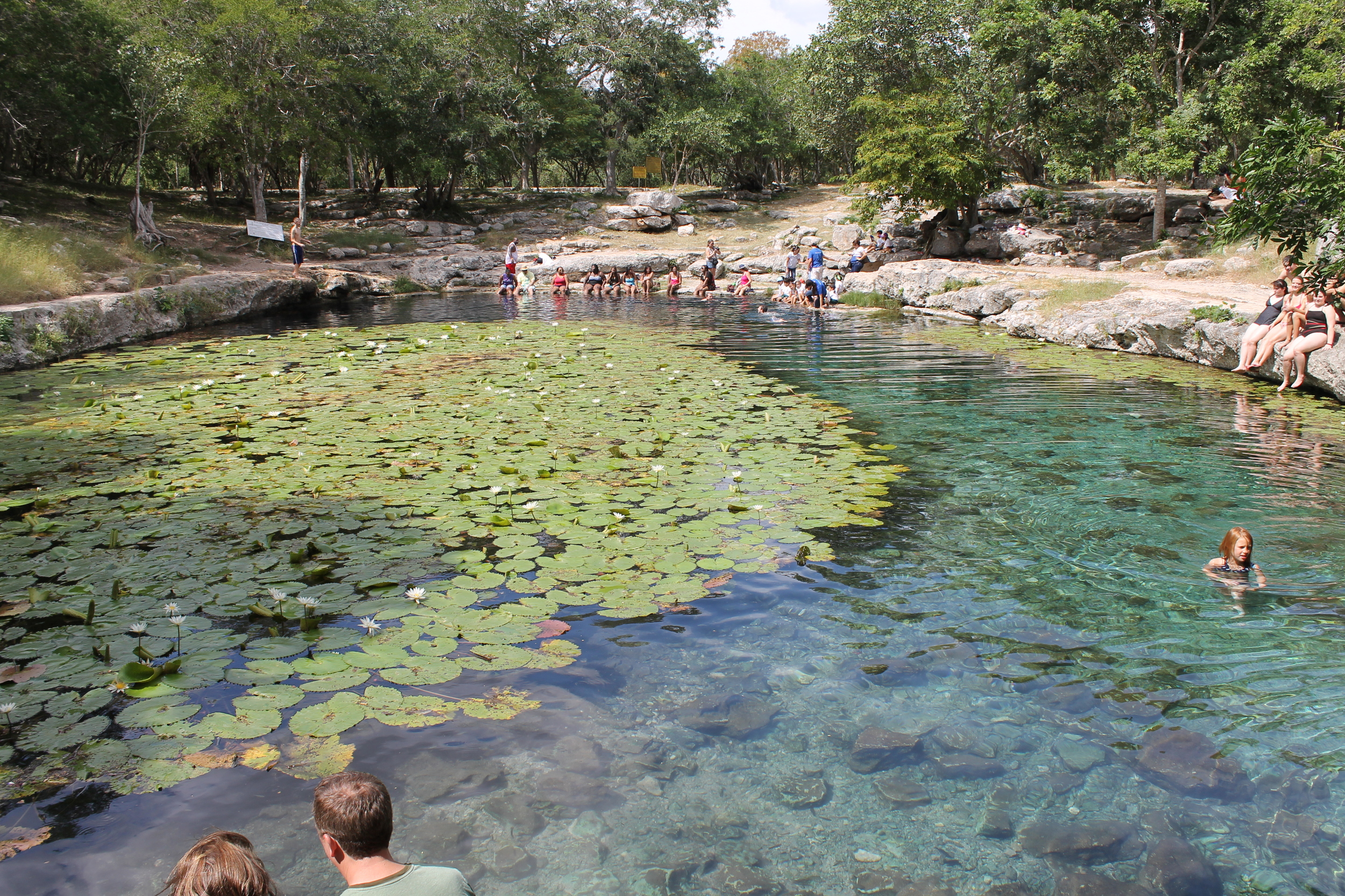 The cenote is a busy place on cruise ship days and so the water gets a little stirred up. The fish are happy though: lots of exfoliation potential.
