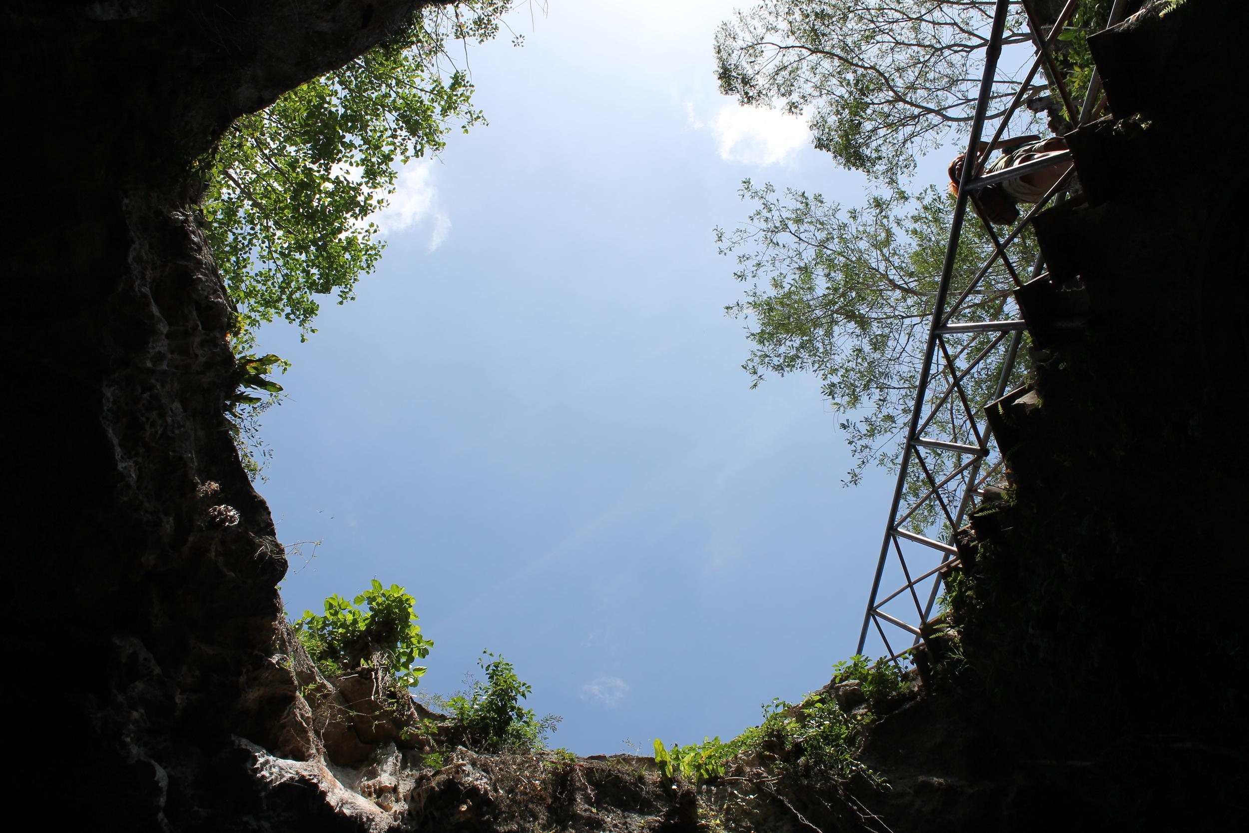 The Chunkanan cenote, looking up.