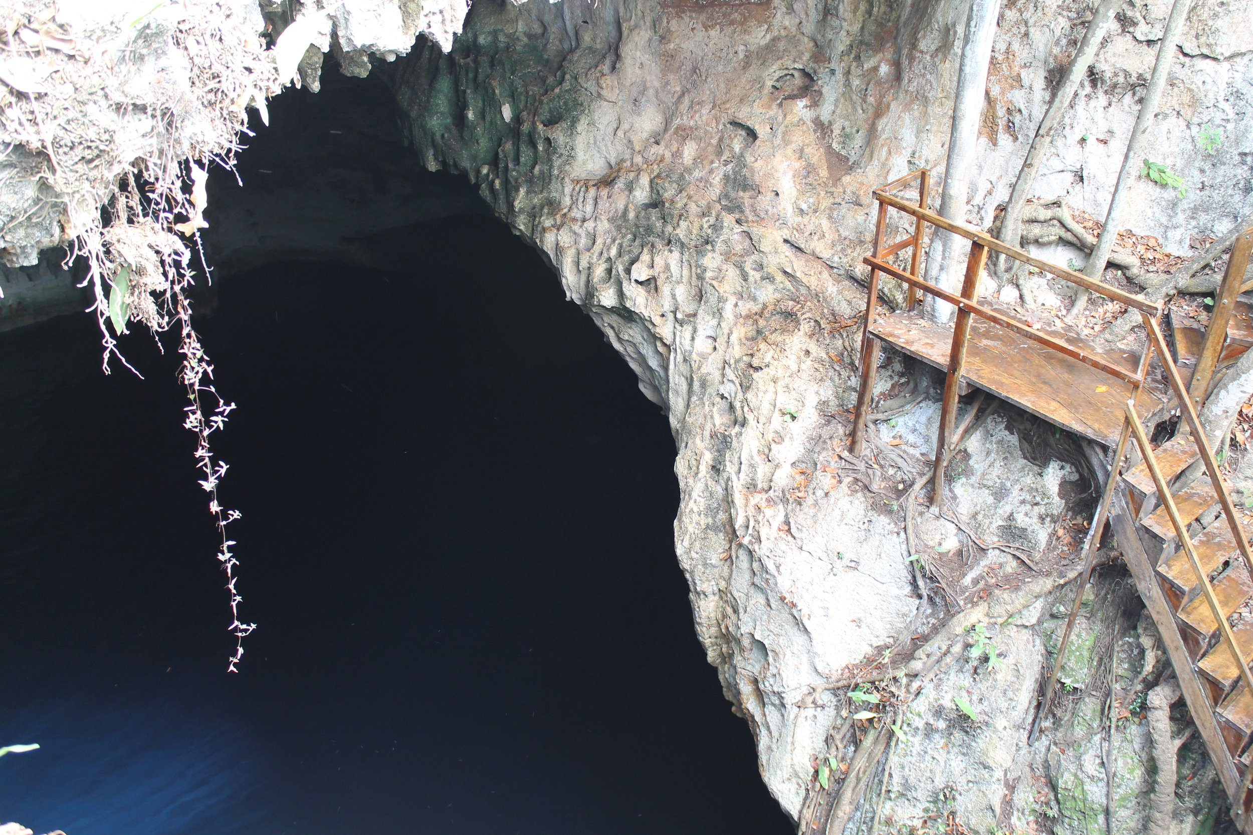 Cenote and ladder