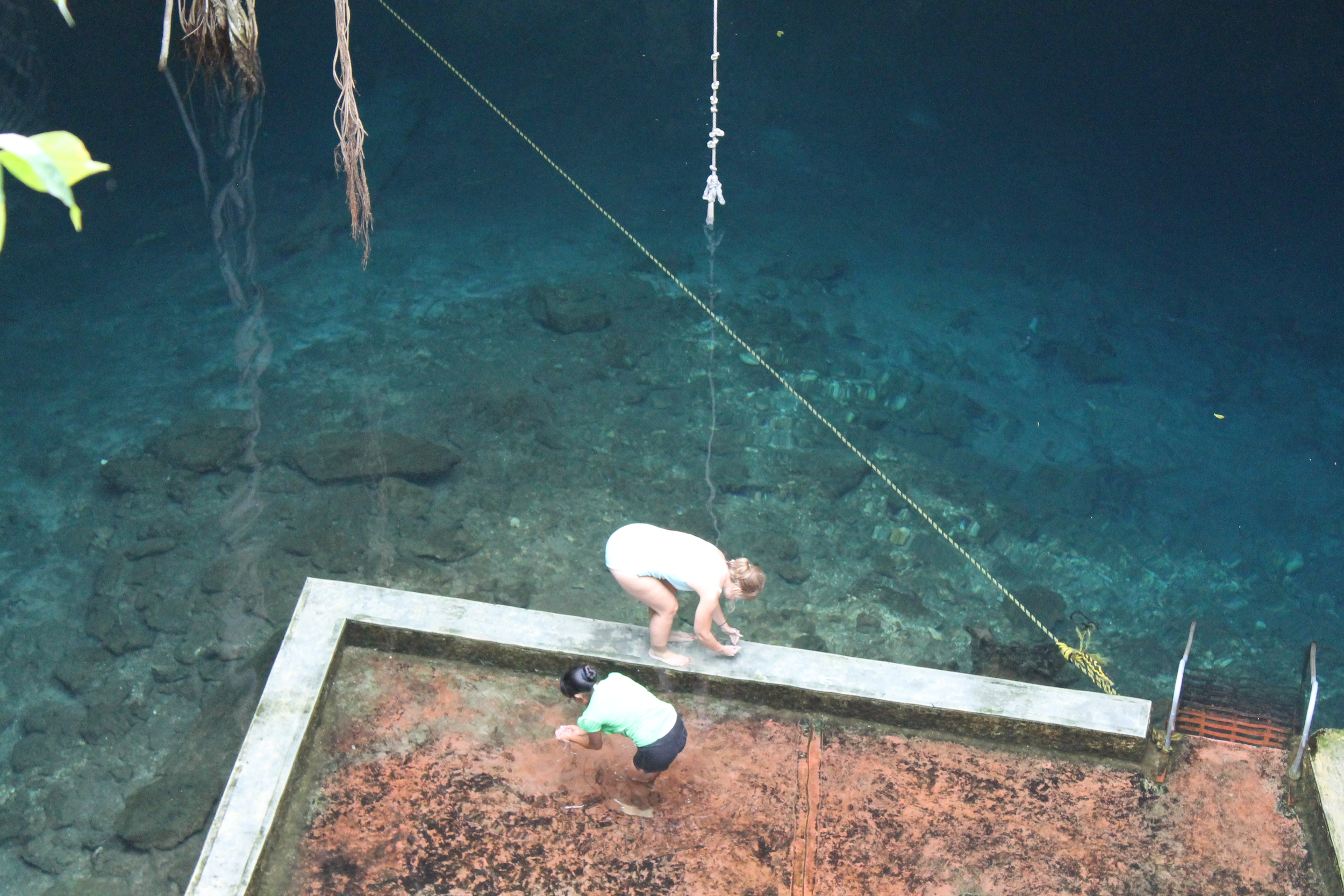 Looking down at cenote #2