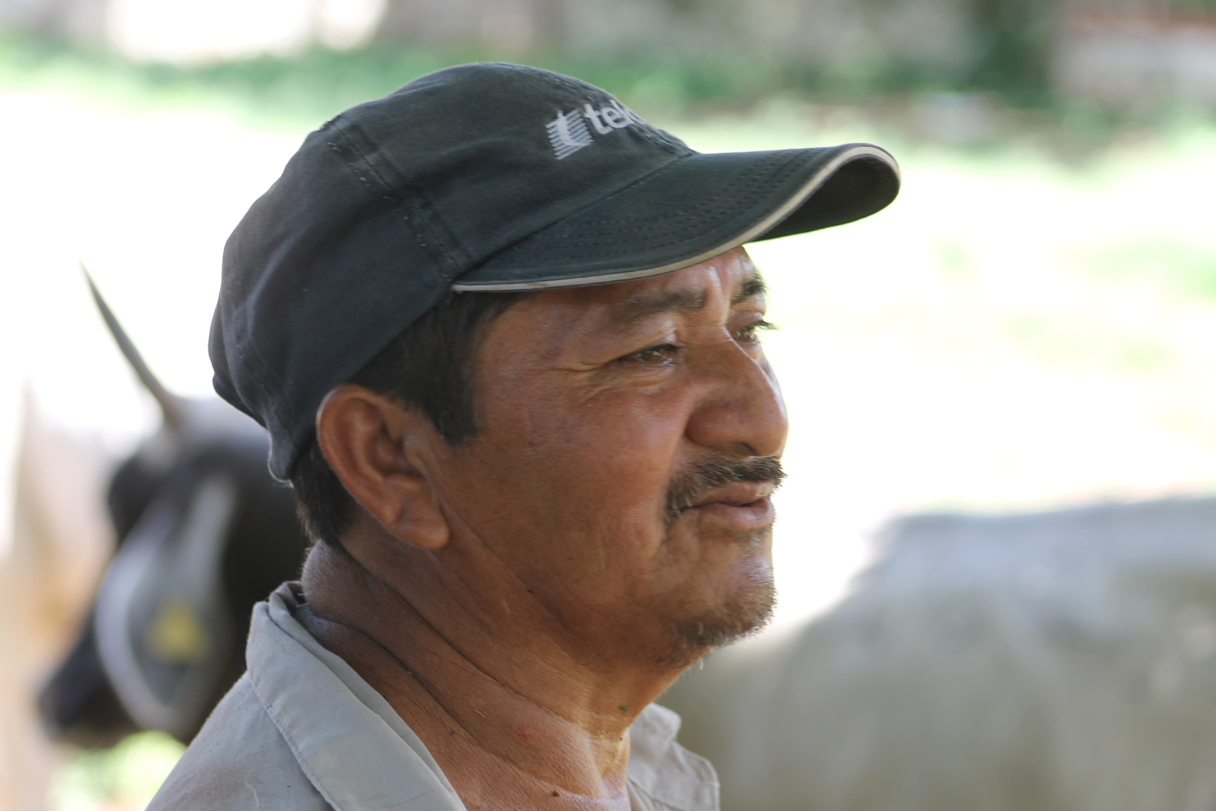 Don Pancho, our guide for the day