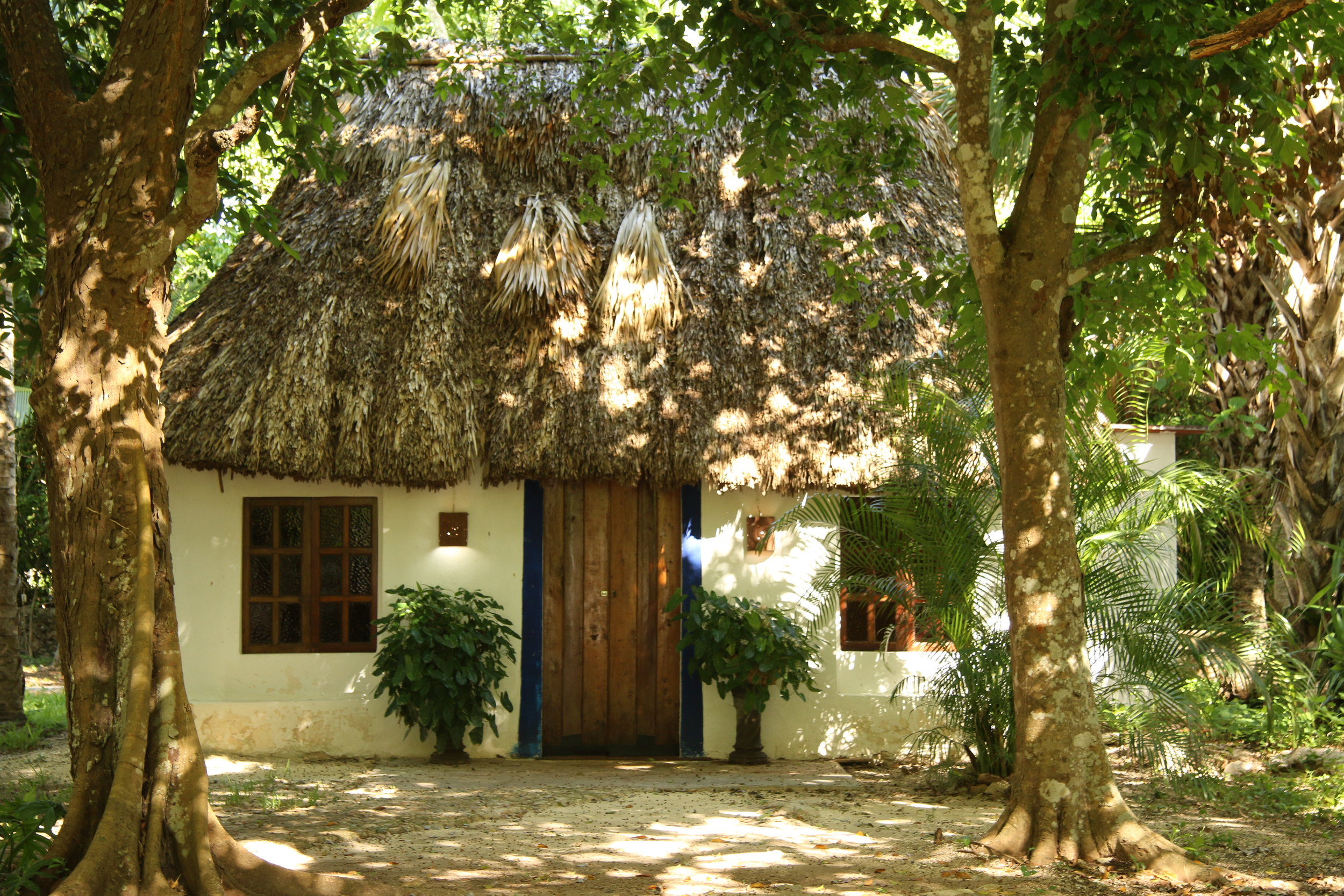 An airbnb in Akil