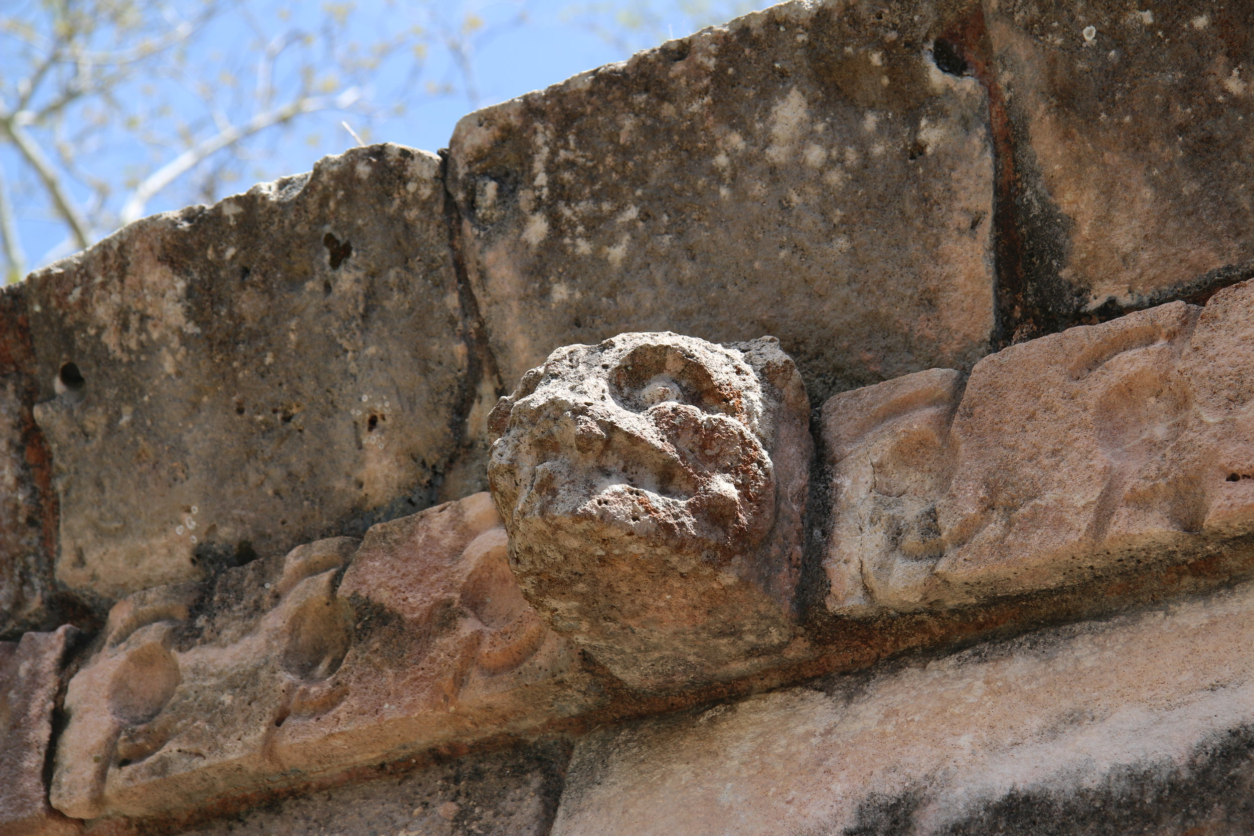 A jaguar head in stone