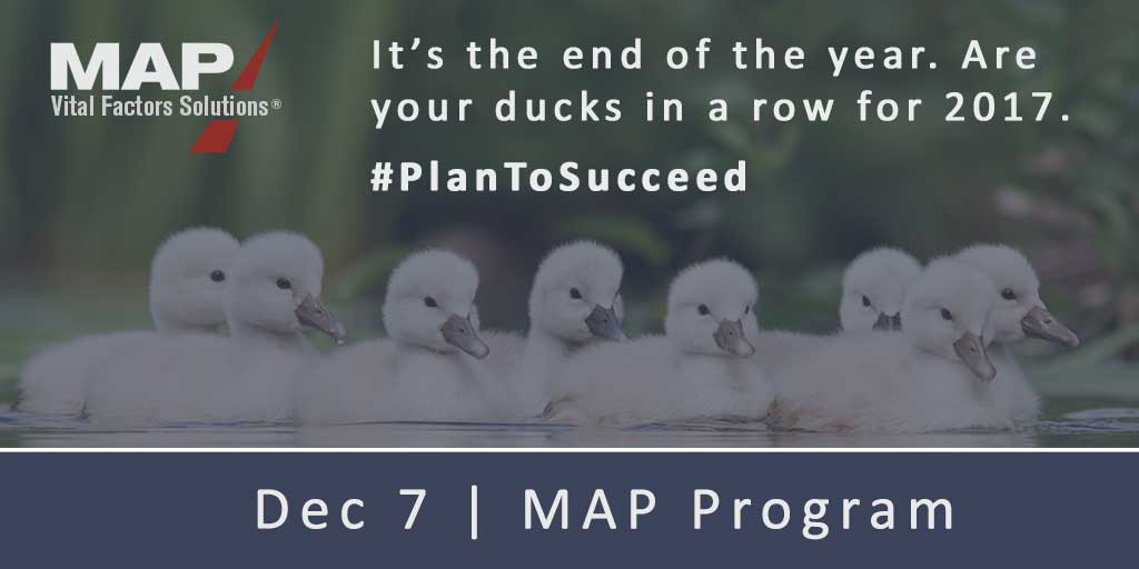 MAP-Dec7-Ducks.jpg