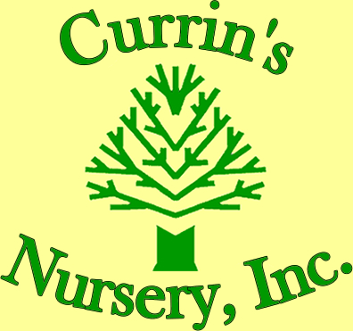 currins_nursery_logo