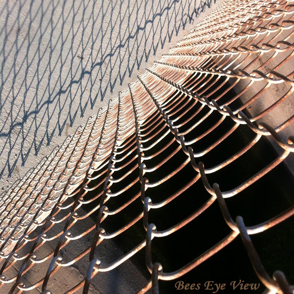 FenceTrancession.jpg