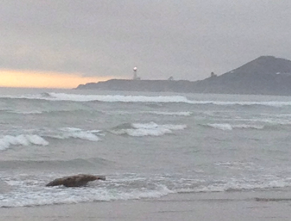 view from Nye Beach.jpg