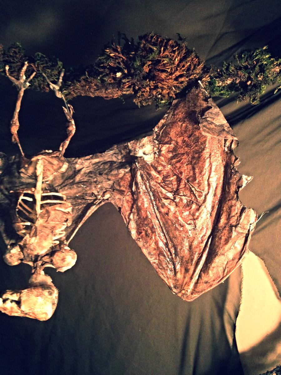 Diy Decaying Bat Skeletons For The