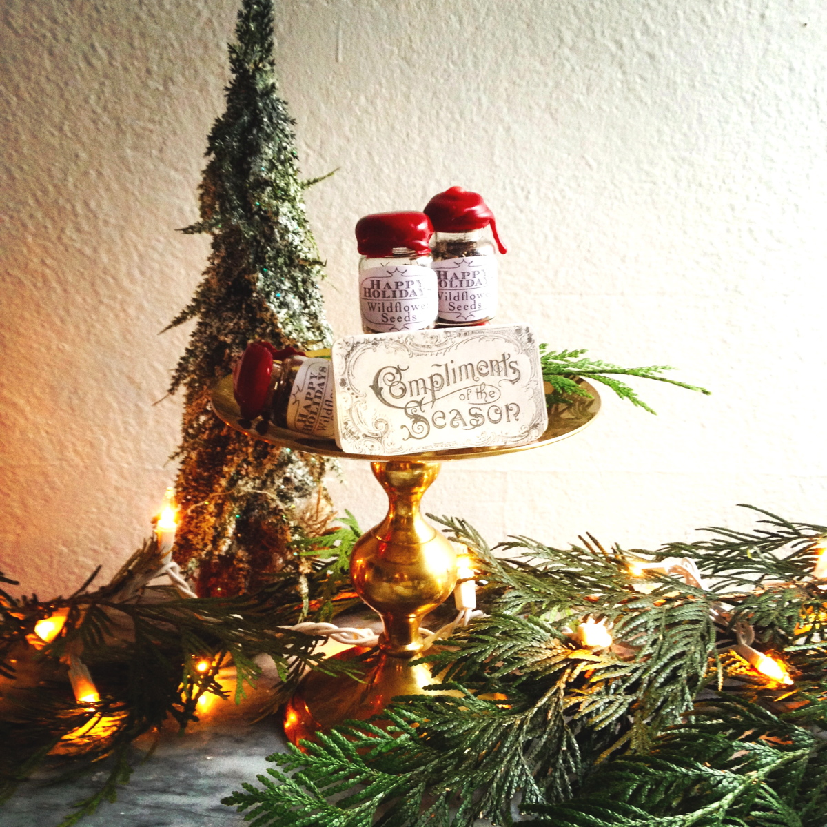 holiday-seed-favors-presents-christmas.JPG