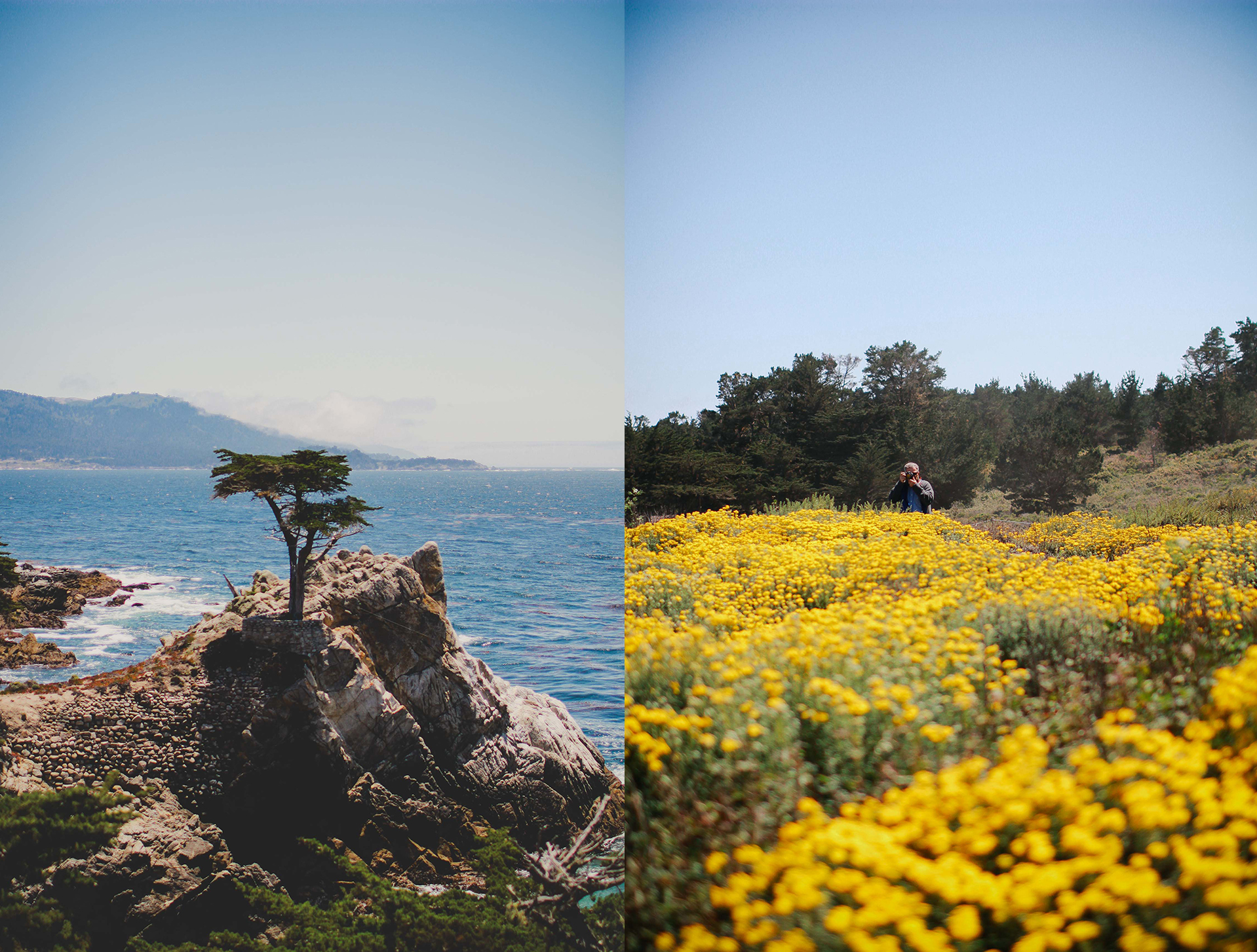 california landscape big sur pacific coast.jpg