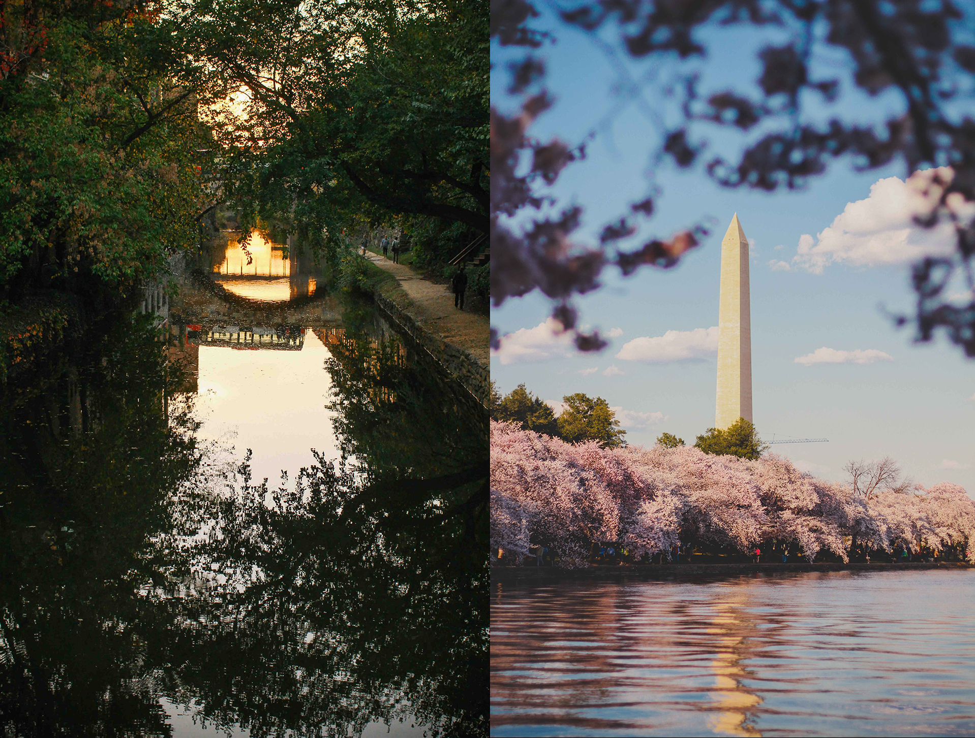georgetown and the national mall .jpg