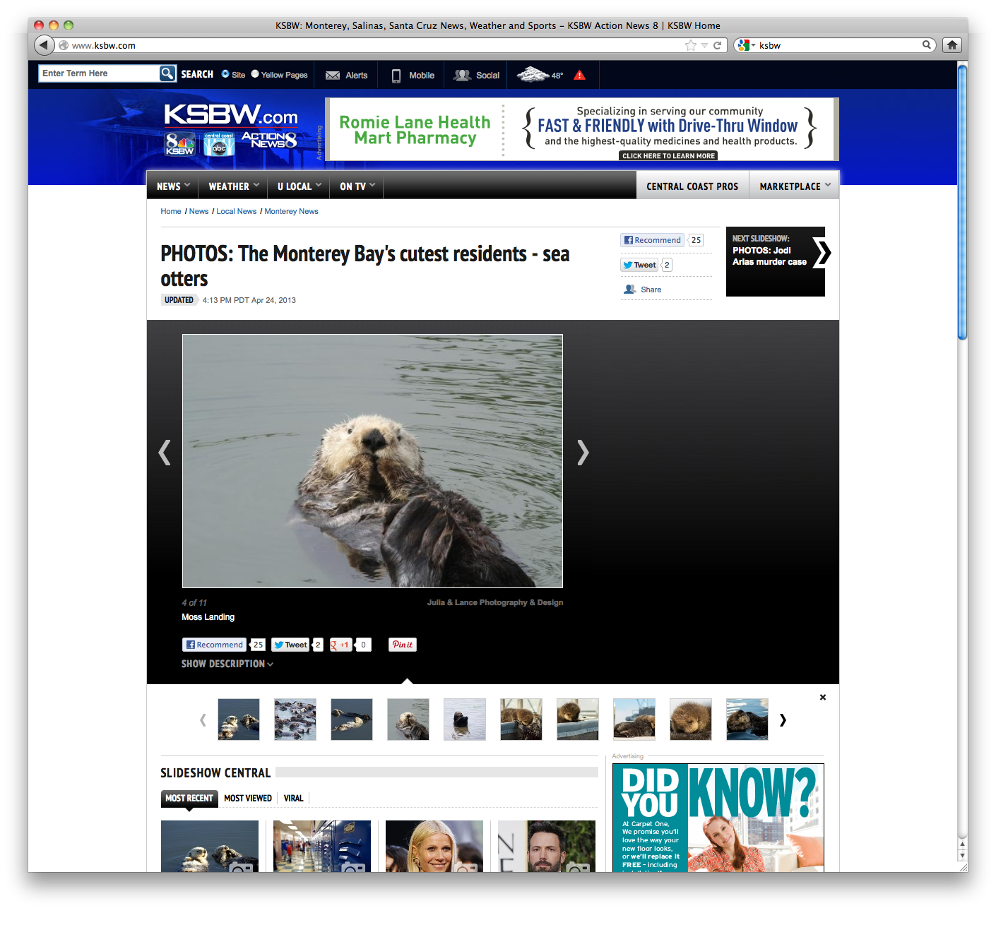 KSBW_Otters_4.png